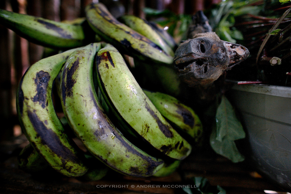 A smoked monkey and plantain bananas in Yamgambi market, DR Congo, on Monday, Dec, 8, 2008. Bushmeat is popular in Congo and an important source of protein which many lack in their diet, but, it is expensive and usually beyond the means of most.