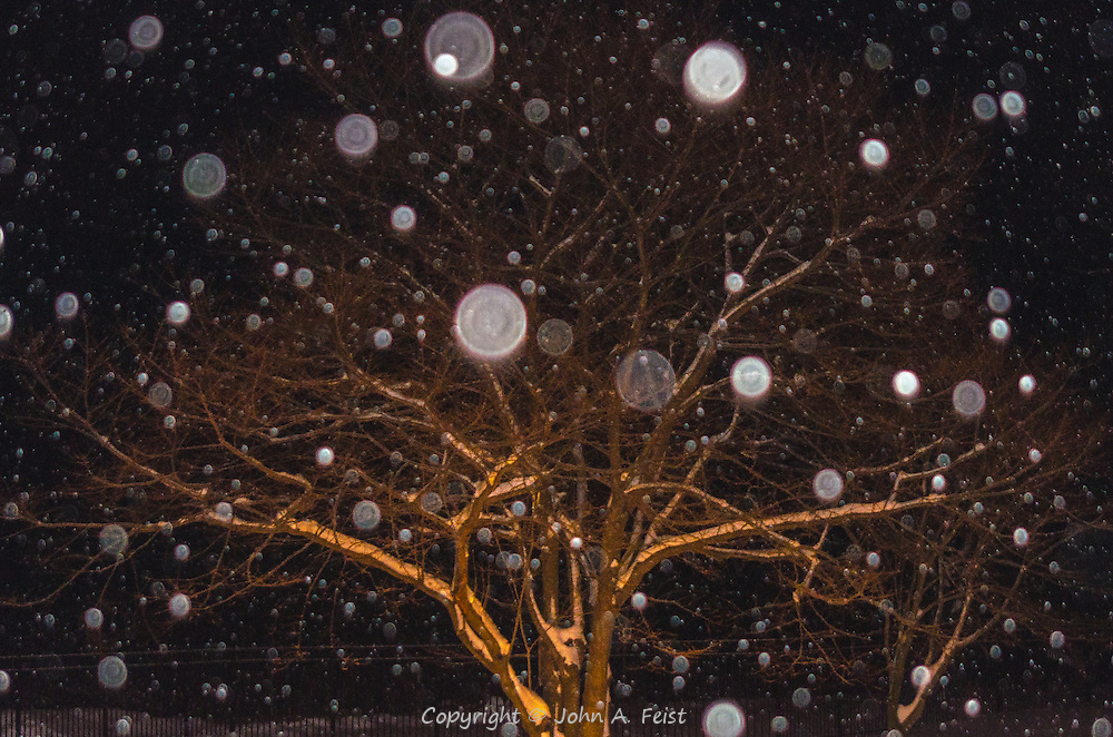 This is a shot at night from the back door of the Loyola retreat house in Morristown, NJ. the white dots are snowflakes reflecting the flash from my camera. This isn't what I intended to shoot, but I love the result.