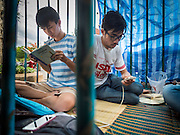 "06 JULY 2015 - BANGKOK, THAILAND: Students sit in a mock jail cell to call attention to the plight of other students arrested for charges related to political assembly. More than 100 people gathered at Thammasat University in Bangkok Monday to show support for 14 students arrested two weeks ago. The students were arrested for violating orders against political assembly. They face criminal trial in military courts. The students' supporters are putting up ""Post It"" notes around Bangkok and college campuses up country calling for the students' release.      PHOTO BY JACK KURTZ"