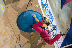 Akiyo Noguchi (JPN) during women final competition of IFSC Climbing World Cup Kranj 2014, on November 16, 2014 in Arena Zlato Polje, Kranj, Slovenia. (Photo By Grega Valancicr / Sportida.com)