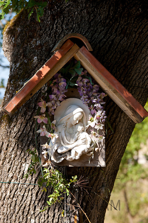 Religious icon grotto on tree by roadside at Pontignano in Chianti region of Tuscany, Italy