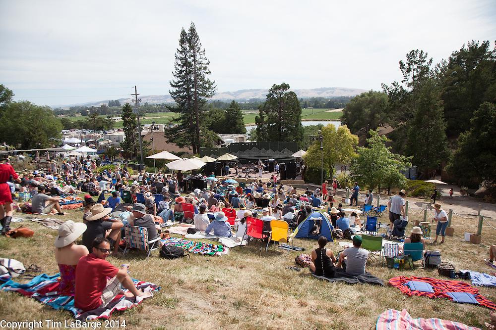 Light Fantastic at Huichica Music Festival 2014 held at Gunlach Bundschu Winery in Sonoma, CA. Photo © Tim LaBarge 2014