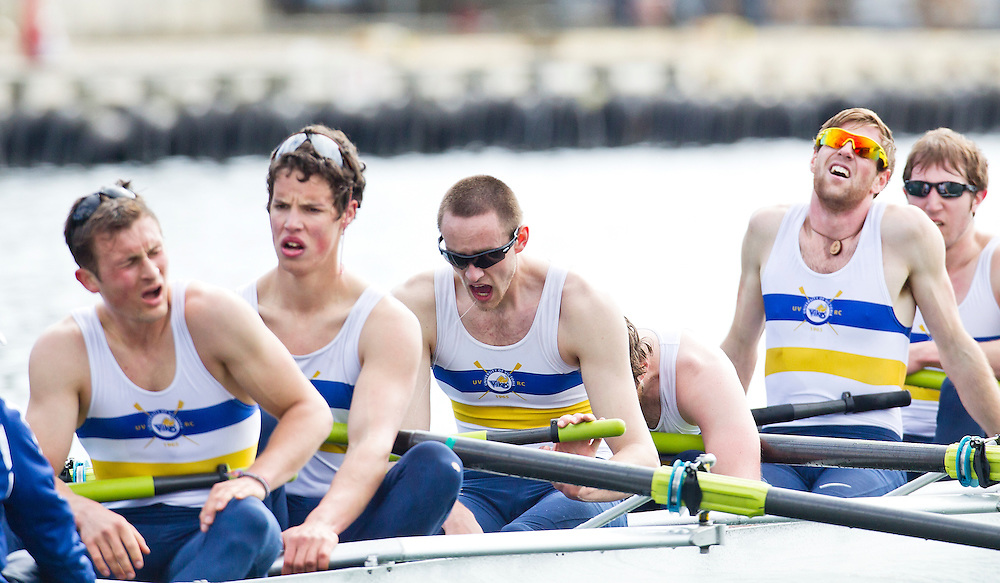 The University of British Columbia UBC varsity Mens rowing crew beat the University of Victoria Uvic Mens varsity rowing crew in the 2014 Brown Cup challenge duel race held along the Gorge Waterway in Victoria British Columbia Canada. Photograph by: KEVIN LIGHT.