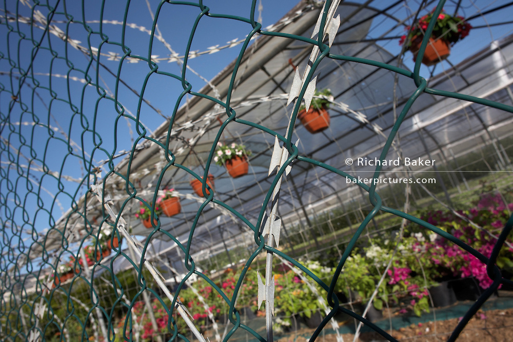 Razor-wire and fencing protects garden shrubs and plant stocks at a town garden centre in Kourou, French Guiana.