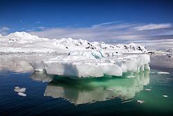 Iceberg, Neko Harbour, Antarctica
