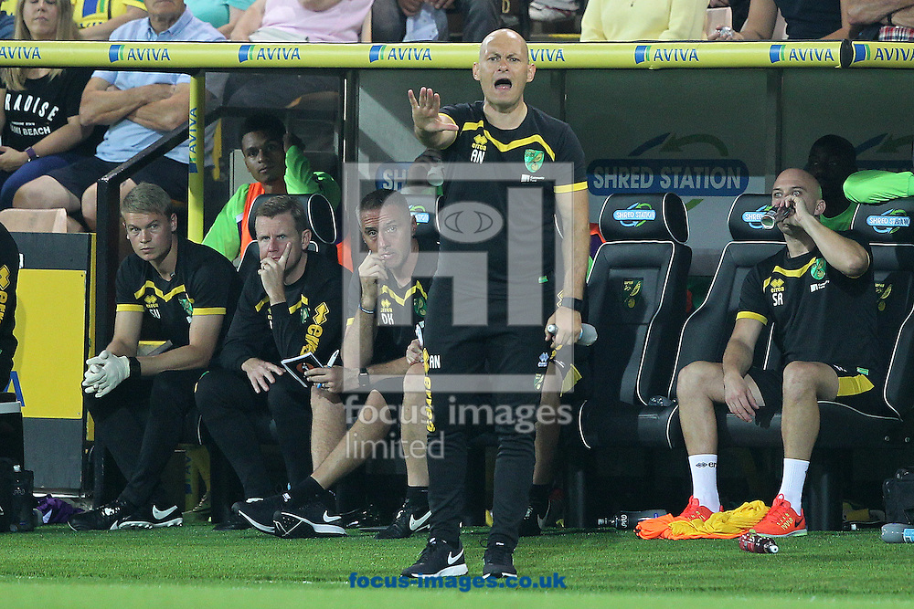 Norwich Manager Alex Neil during the Sky Bet Championship match at Carrow Road, Norwich<br /> Picture by Paul Chesterton/Focus Images Ltd +44 7904 640267<br /> 13/09/2016