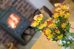 Flowers in a vase at Eco House at The Wintles; Bishop's Castle,
