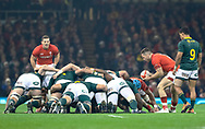 Gareth Davies of Wales puts in to the scrum<br /> <br /> Photographer Simon King/Replay Images<br /> <br /> Under Armour Series - Wales v South Africa - Saturday 24th November 2018 - Principality Stadium - Cardiff<br /> <br /> World Copyright © Replay Images . All rights reserved. info@replayimages.co.uk - http://replayimages.co.uk