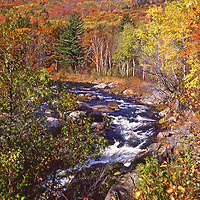 Fall in Lake Placid New York with Ausable River and Whiteface Mountain