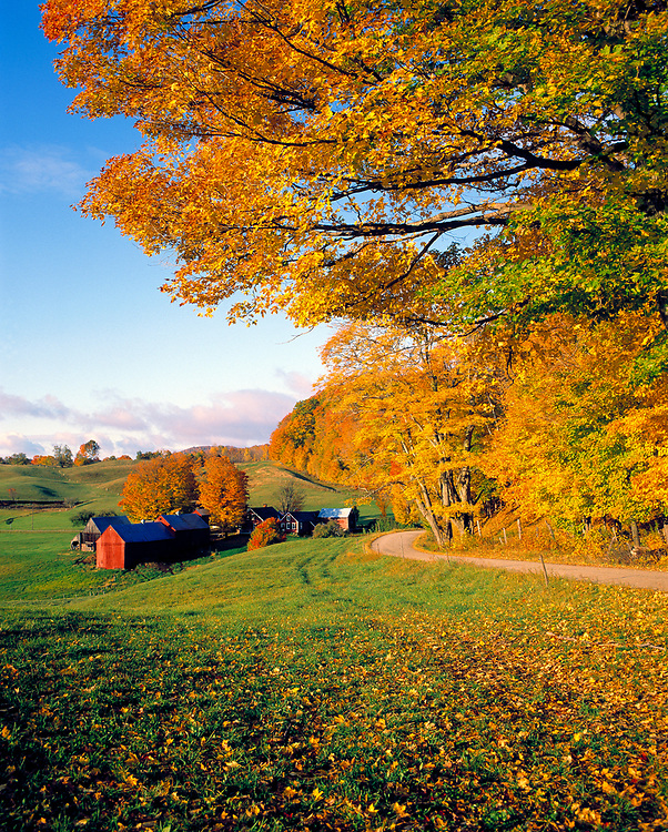 Jenne Farm is at the end of the road near Woodstock in Vermont.