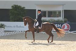 Jorissen, Philippe, Le Beau<br /> Aachen - CHIO 2014<br /> CDIO Grand Prix<br /> © www.sportfotos-lafrentz.de/ Stefan Lafrentz