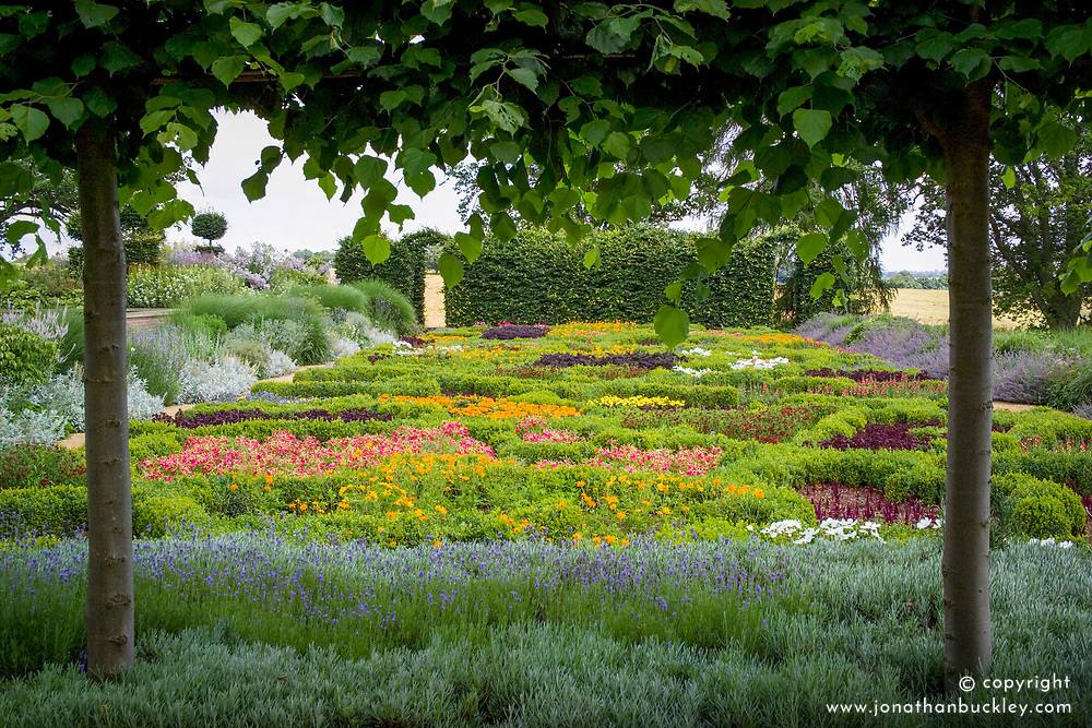 Knot garden of annuals at Broughton Grange