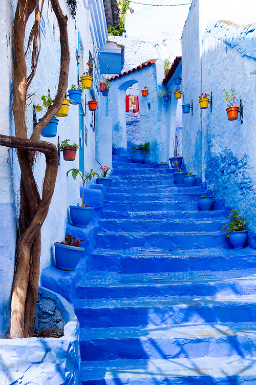 CHEFCHAOUEN, MOROCCO - 28th MARCH 2014 - Colourful street and steps lined with decorative flower and plant pots, Chefchaouen - the blue city - Rif Mountains, Northern Morocco.