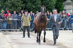 Paget Jonathon, (NZL), Clifton Promise<br /> First Horse Inspection - Mitsubishi Motors Badminton Horse Trials <br /> Badminton 2015