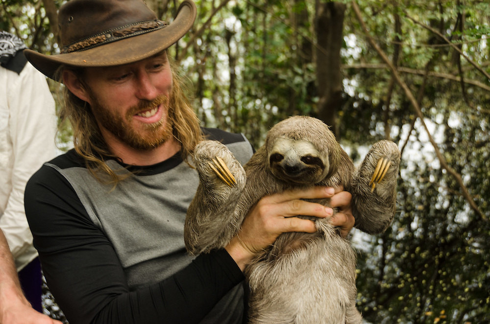 Interaction with sloth (Bradypus tridactylus).