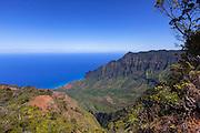 Kalalau Lookout, Kokee State Park, Kauai, Hawaii