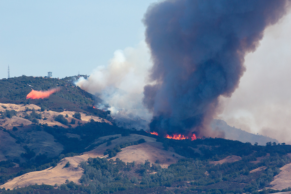 The Morgan Fire burning on Mount Diablo as seen from Highland Drive on Sept. 9th, 2013. in Danville,CA. (Charles Hall/challphotos.com)