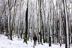 © Licensed to London News Pictures. 27/12/2017. Oakhill, UK. Mia Hiscox aged 19 walks through the snow in the ancient Beacon Hill Woods near Oakhill on the Mendip Hills. Photo credit: Jason Bryant/LNP