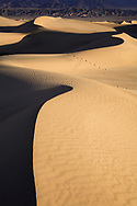 Early Morning Light On Sand Dunes In Death Valley National Park, California