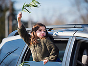 """05 APRIL 2020 - DES MOINES, IOWA:  LORELEI KOWLESSAR, 6, waves her palm branch during a drive through Palm Sunday service sponsored by Luther Memorial Church on the campus of Grand View University in Des Moines. About 150 people attended the service. They remained in their cars while the ministers read a short passage from the Bible, handed out palms and blessed them. On Sunday, 05 April, Iowa reported 868 confirmed cases of the Novel Coronavirus (SARS-CoV-2) and COVID-19. There have been 22 deaths attributed to COVID-19 in Iowa. Restaurants, bars, movie theaters, places that draw crowds are closed until 30 April. The Governor has not ordered """"shelter in place"""" but several Mayors, including the Mayor of Des Moines, have asked residents to stay in their homes for all but essential needs. People are being encouraged to practice """"social distancing"""" and many businesses are requiring or encouraging employees to telecommute.        PHOTO BY JACK KURTZ"""