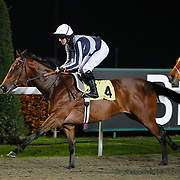 Phosphorescence and Tom Queally winning the 4.50 race