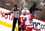 Apr 23, 2010; Glendale, AZ, USA; Detroit Red Wings left wing Justin Abdelkader (8) and left wing Drew Miller (20) celebrate after Miller scores a goal during the first period of game five in the first round of the 2010 Stanley Cup Playoffs at Jobing.com Arena.  Mandatory Credit: Jennifer Stewart-US PRESSWIRE