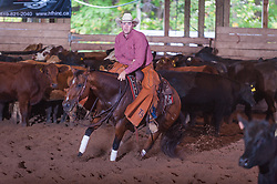 September 23, 2017 - Minshall Farm Cutting 5, held at Minshall Farms, Hillsburgh Ontario. The event was put on by the Ontario Cutting Horse Association. Riding in the Non-Pro Class is Trent Schade on Elseware owned by the rider.