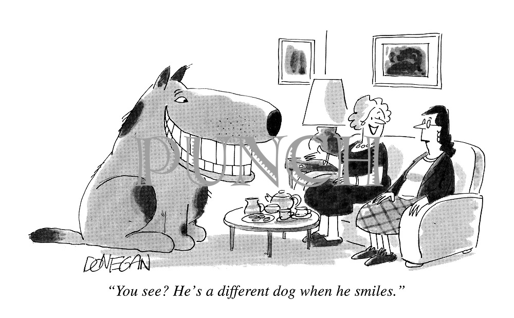 """""""You see? He's a different dog when he smiles."""""""