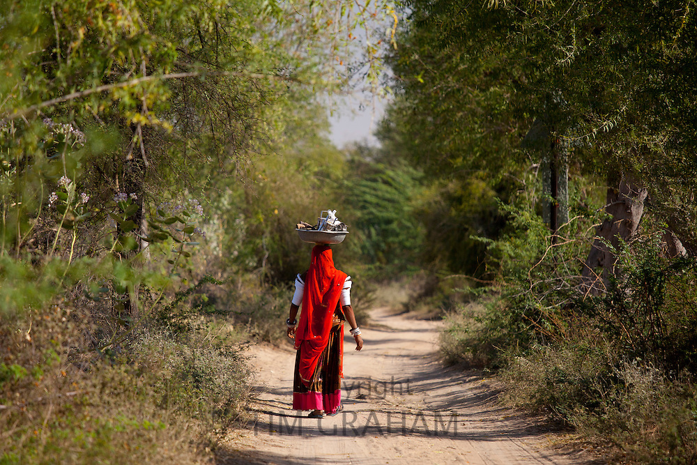 Indian Bishnoi woman carrying bowl near Rohet in Rajasthan, Northern India