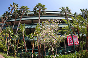ANAHEIM, CA - MAY 14:  Palm trees flank the stadium walls at the Los Angeles Angels of Anaheim game against the Boston Red Sox at Angel Stadium in Anaheim, California on Thursday, May 14, 2009.  The Angels defeated the Red Sox 5-4 in 12 innings.  (Photo by Paul Spinelli/MLB Photos)