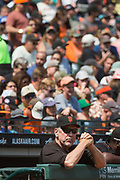 San Francisco Giants manager Bruce Bochy (15) watches his team take on the Philadelphia Phillies at AT&T Park in San Francisco, California, on August 20, 2017. (Stan Olszewski/Special to S.F. Examiner)