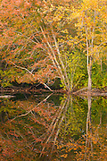 Autumn on the Ipswich River, North Reading, MA, USA