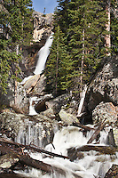 Ouzel Falls on Ouzel Creek in the Wild Basin Area, Rocky Mountain National Park, Colorado.