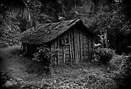 Traditional house in rural Southewestern Cameroon.  Despite being surrounded by a vast rainforest, locals actually use very little wood and none from old growth trees.  According to Cameroonian environmental activist, Christopher Achobang, local people believe that the spirits of their dead family members inhabit the giant trees.  To cut down these trees, they believe, would be to kill the vessel that harbors the souls of their ancestors.