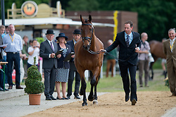Mcnab Kevin (AUS) - Fernhill Quality Street<br /> Horse Inspection <br /> CCI4*  Luhmuhlen 2014 <br /> © Hippo Foto - Jon Stroud