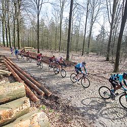 23-03-2019: Wielrennen: Drentse Dorpenomloop: Assen<br />-wielrennen - Assen - Drenthe - KNWU<br />-172- Nahom Desale, -108-  Jorick Heijn