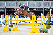 Andrea d'Antoni - Capitan Lafitte<br /> FEI World Breeding Jumping Championships for Young Horses 2016<br /> © DigiShots