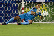 FRISCO, TX - JULY 13:  Raul Fernandez #1 of FC Dallas makes a diving save against Real Salt Lake on July 13, 2013 at FC Dallas Stadium in Frisco, Texas.  (Photo by Cooper Neill/Getty Images) *** Local Caption *** Raul Fernandez