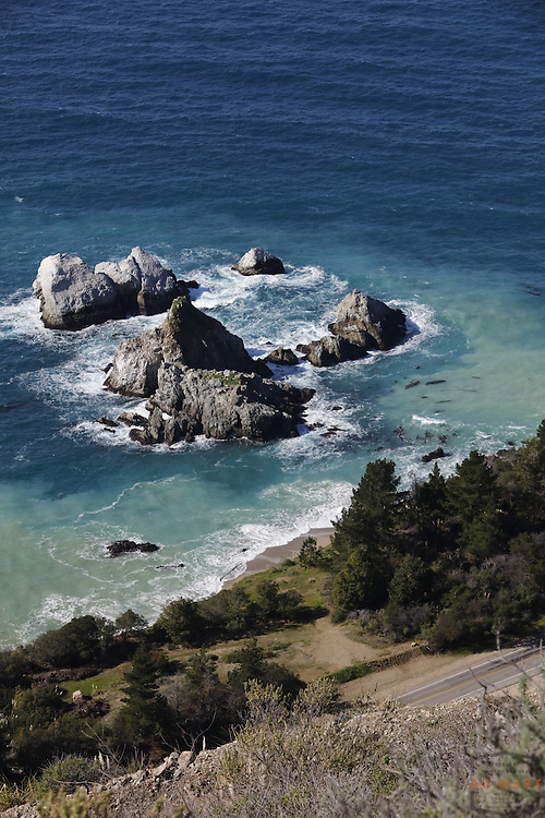 View of the Pacific Ocean from Julia Pfeiffer Burns State Park, Highway 1 of the Central California Coast, near Big Sur, CA  Feb. 1, 2016. (AJ Mast )