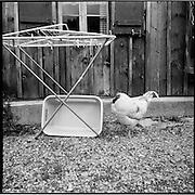 Der Landwirt und Wildheuer Toni Herger betreibt mit seiner Frau auf dem Urnerboden Berglandwirtschaft unter rauhen Bedingungen. Der Aufenthalt während des Winters war auf dem «Boden» bis 1877 gesetzlich verboten. © Romano P. Riedo