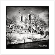Notre-Dame de Paris, France - Monochrome version. Inkjet pigment print on Canson Infinity Rag Photographique 310gsm 100% cotton museum grade Fine Art and photo paper.<br /> <br /> 8x8&quot; Prints: First print $49. Additional prints in same order $29. (A half inch white border is added for safe handling. Size with border 9x9&rdquo;).<br /> <br /> Frame-Ready Prints: Add $29 per print. Includes mounting on 12x12&rdquo; foam-board, plus white matboard with 8x8&rdquo; photo opening. Suits standard 12x12&rdquo; frames.<br /> <br /> Price includes GST &amp; postage within Australia. <br /> <br /> Order by email to orders@girtbyseaphotography.com  quoting image title or reference number, your contact details, delivery address &amp; preferred payment method (PayPal or Bank Deposit). You will be invoiced by return email. Normally ships within 7 days of payment.