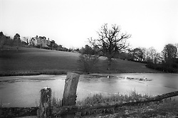 UK ENGLAND WEST SUSSEX DEC05 - Rural landscape near Turners Hill in West Sussex, southern England...jre/Photo by Jiri Rezac..© Jiri Rezac 2005..Contact: +44 (0) 7050 110 417.Mobile:  +44 (0) 7801 337 683.Office:  +44 (0) 20 8968 9635..Email:   jiri@jirirezac.com.Web:    www.jirirezac.com..© All images Jiri Rezac 2005 - All rights reserved.