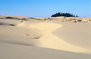 Hikers at Umpqua Sand Dunes in the Oregon Dunes National Recreation Area on the central Oregon coast.