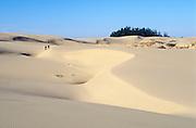 Hikers at Umpqua Sand Dunes in the Oregon Dunes National Recreation Area on the central Oregon coast.