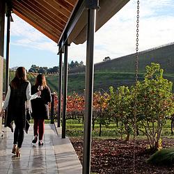Wine tasting in Healdsburg, Sonoma County, CA for Viator.