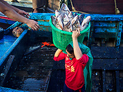 23 NOVEMBER 2017 - YANGON, MYANMAR: A worker carries a basket of fish out of the cargo hold of a boat at the San Pya Fish Market. San Pya Fish Market is one of the largest fish markets in Yangon. It's a 24 hour market, but busiest early in the morning. Most of the fish in the market is wild caught but aquaculture is expanding in Myanmar and more farmed fresh water fish is being sold now than in the past.    PHOTO BY JACK KURTZ