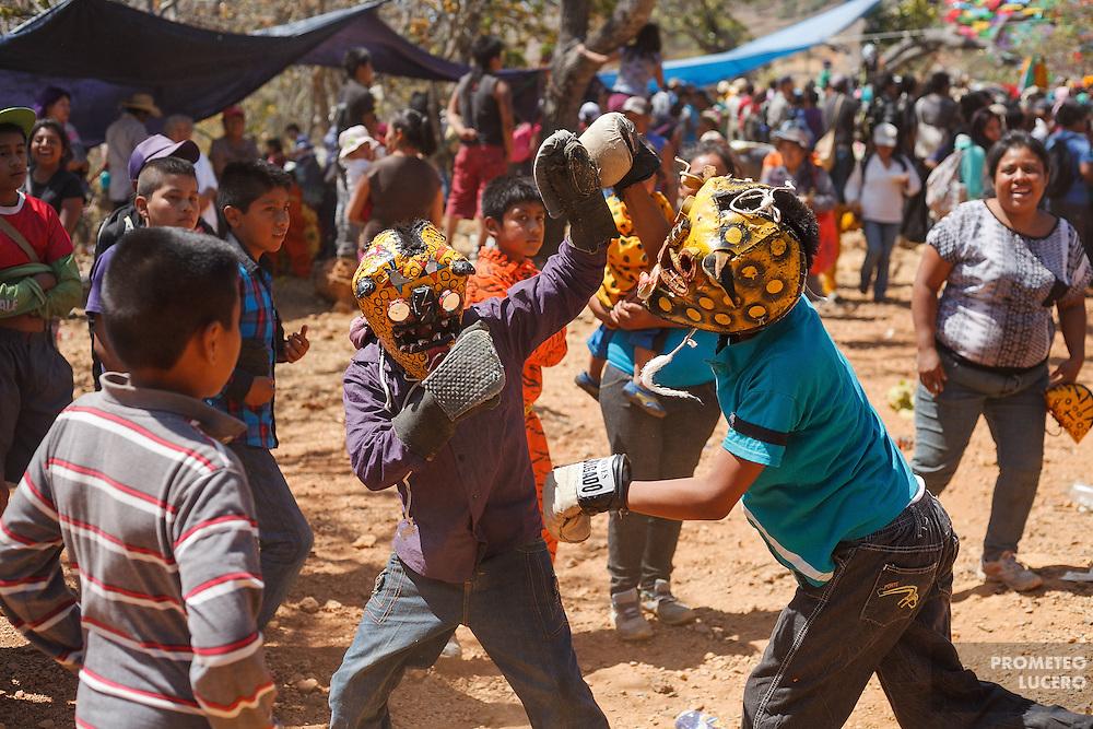 Un grupo de ni&ntilde;os participa en la pelea de tigres.  La tradici&oacute;n en un inicio marcaba que en el ritual solamente participaran hombres adultos.<br /> <br /> Cada a&ntilde;o, Ind&iacute;genas nahuas de Acatl&aacute;n, municipio de Chilapa, Guerrero, protagonizan en las alturas del Corozco o &quot;Lugar de las Cruces&quot;, la Pelea de Tigres para atraer la lluvia y mejorar las cosechas. En el batimiento participan hombres, pero tambi&eacute;n mujeres y ni&ntilde;os. La creencia es que mientras m&aacute;s peleas haya, mejores lluvias habr&aacute; para el campo. (Foto: Prometeo Lucero)