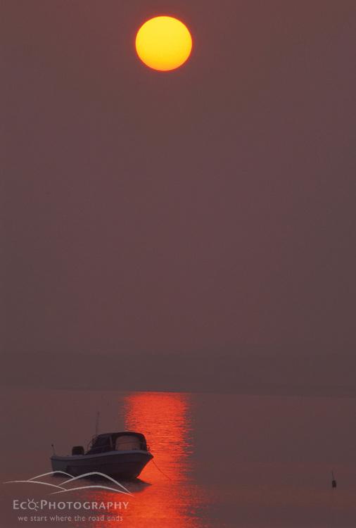 Lower Makonikey, Martha's Vineyard, MA. Boats. The sun rises thru fog.