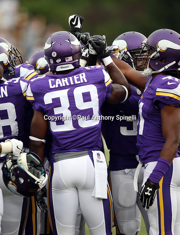 The Minnesota Vikings join hands before the 2015 NFL Pro Football Hall of Fame preseason football game against the Pittsburgh Steelers on Sunday, Aug. 9, 2015 in Canton, Ohio. The Vikings won the game 14-3. (©Paul Anthony Spinelli)
