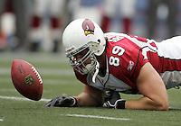 Arizona Cardinals' Adam Bergen fumbles the ball in the second half of the Seattle Seahawks vs. Arizona Cardinals NFL game at Qwest Field on Sunday Sept. 17, 2006. .